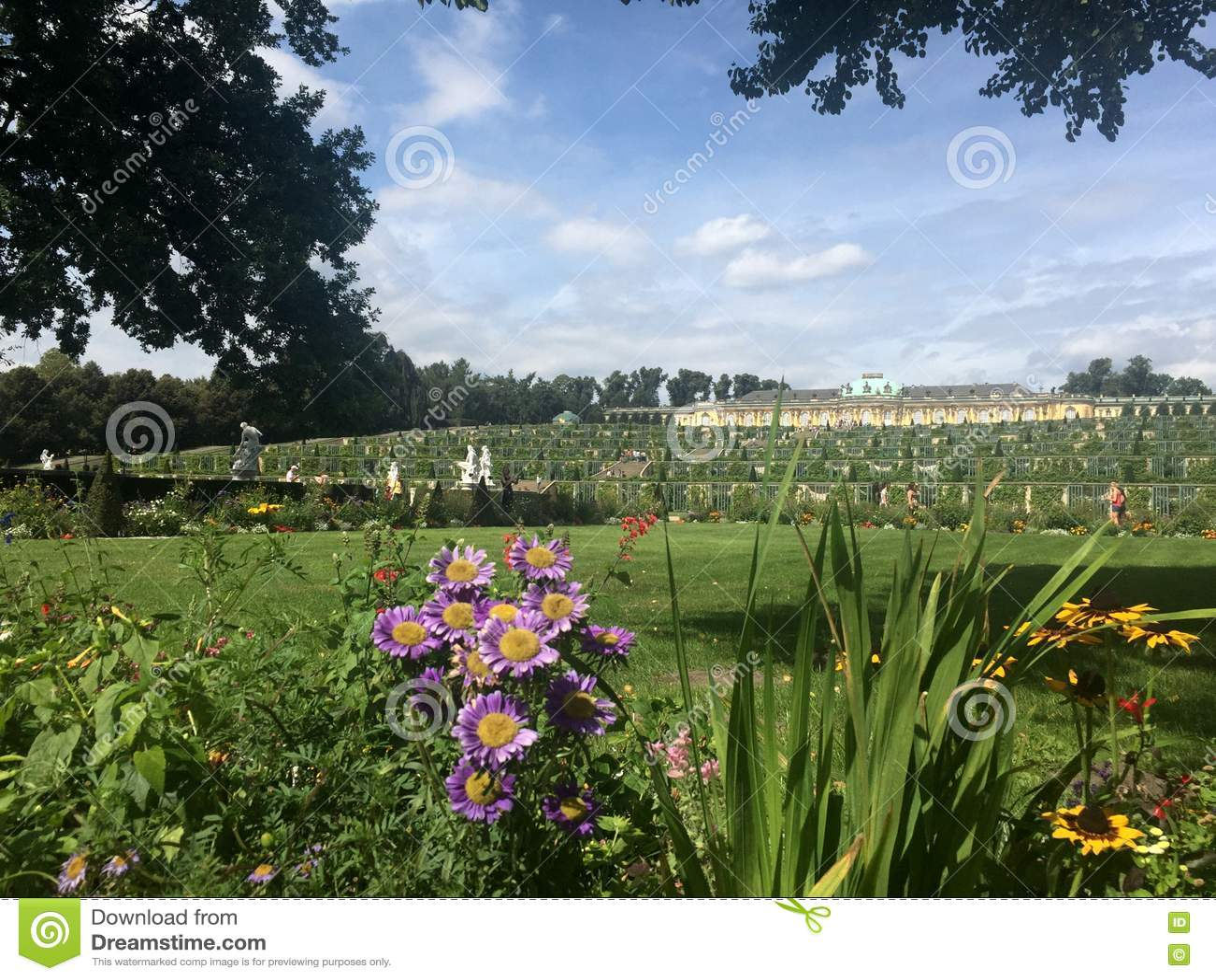 Sanssouci trädgårdsikt