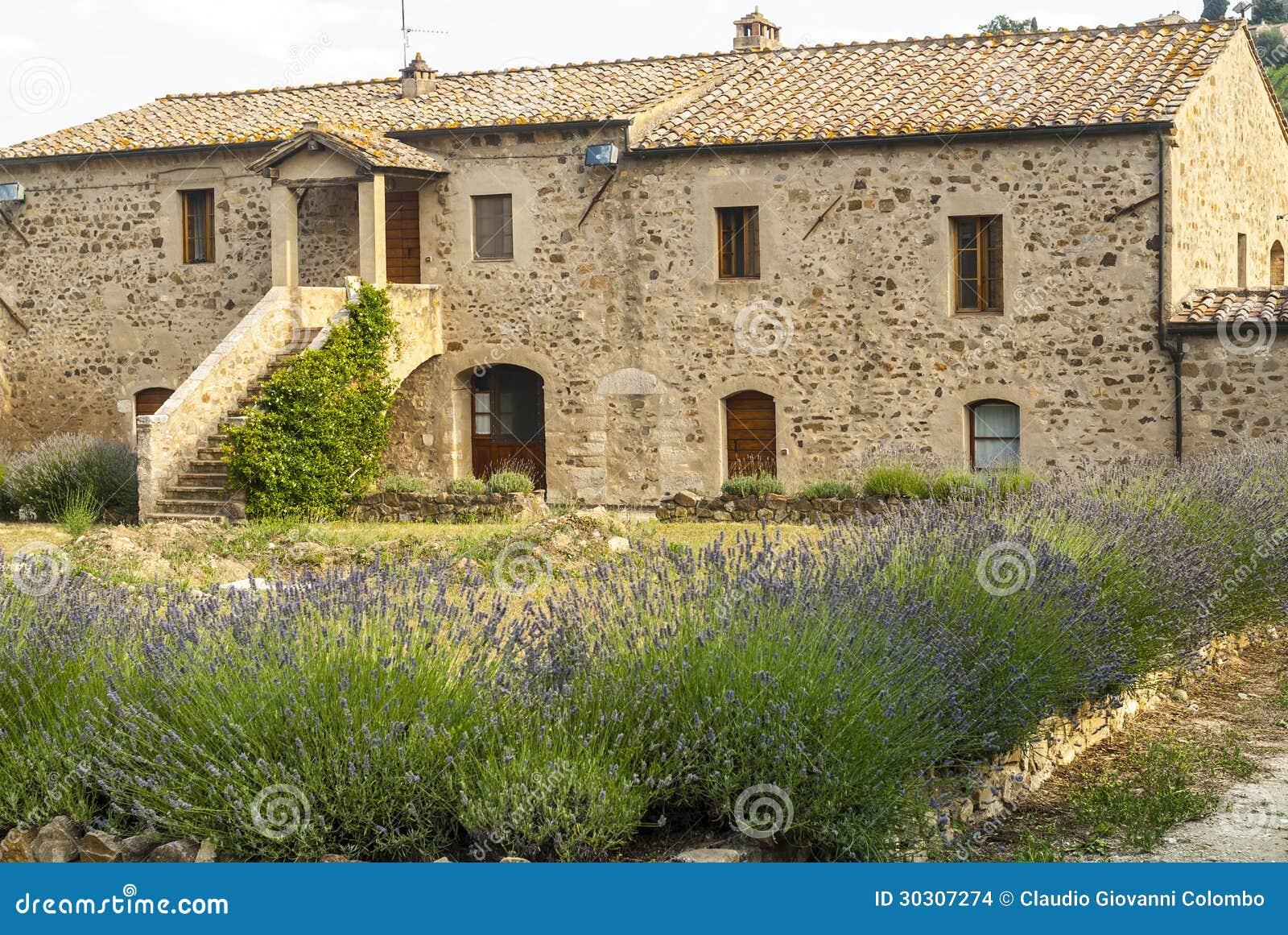 Sant 39 antimo casa antica con lavanda immagini stock for Casa di campagna toscana