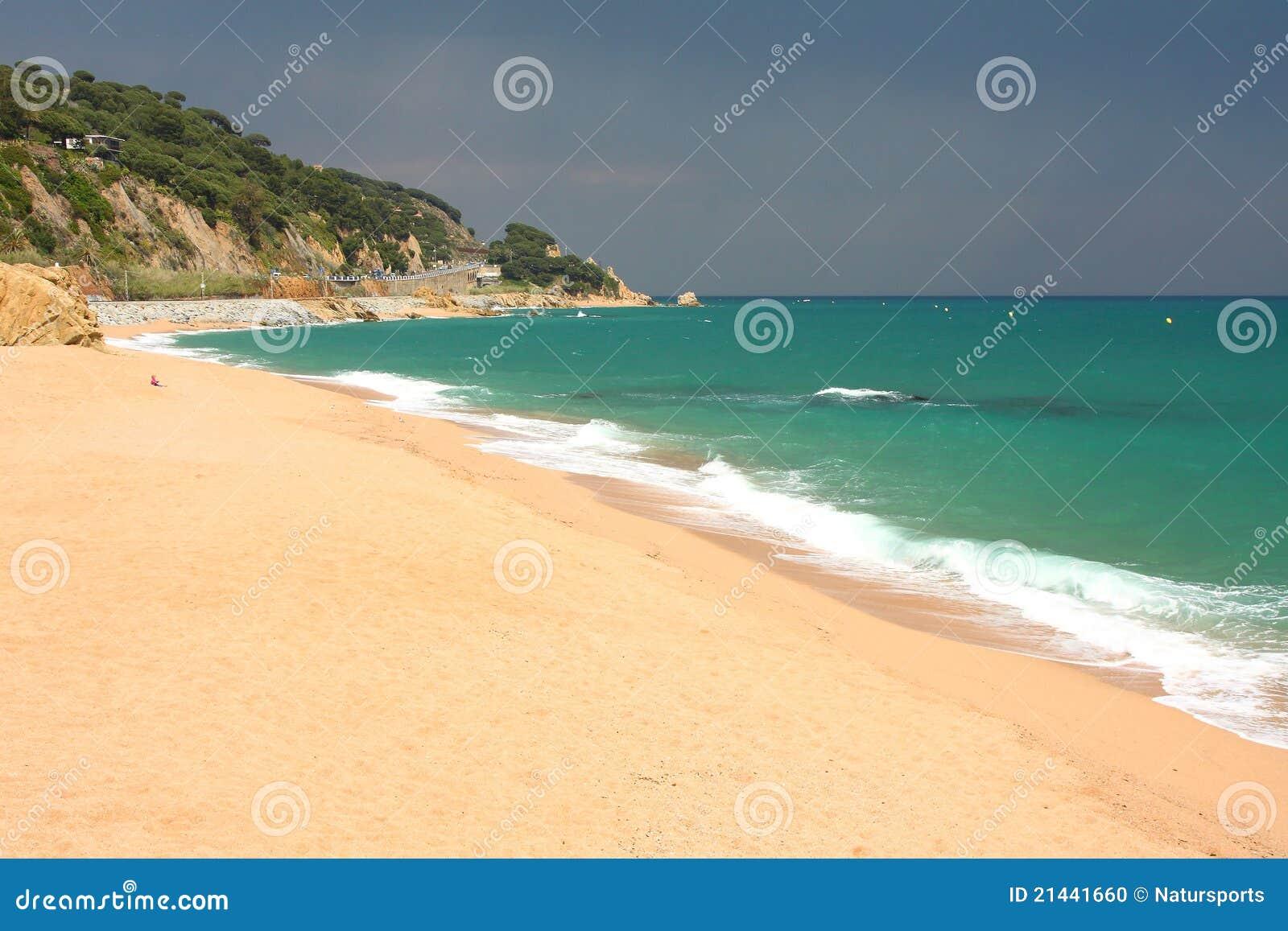 Sant plażowy polityk
