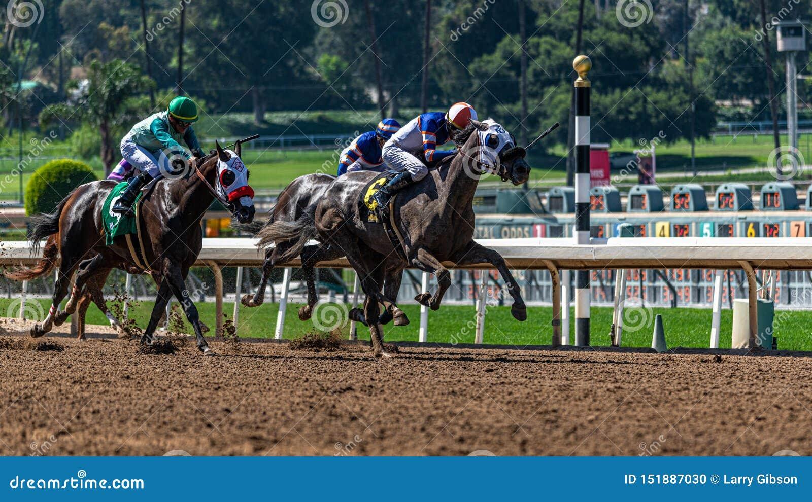 Santa Anita Park Horse Racing
