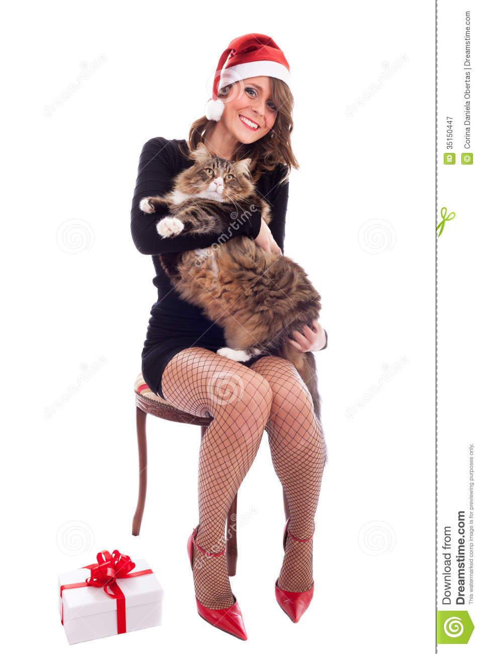 Santa Babe With Maine Coon Cat Royalty Free Stock -4013