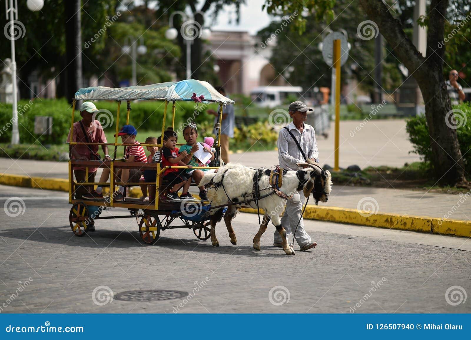 Santa Clara, Куба, 18-ое августа 2018: Billi-коза вытягивает фуру на улице Santa Clara