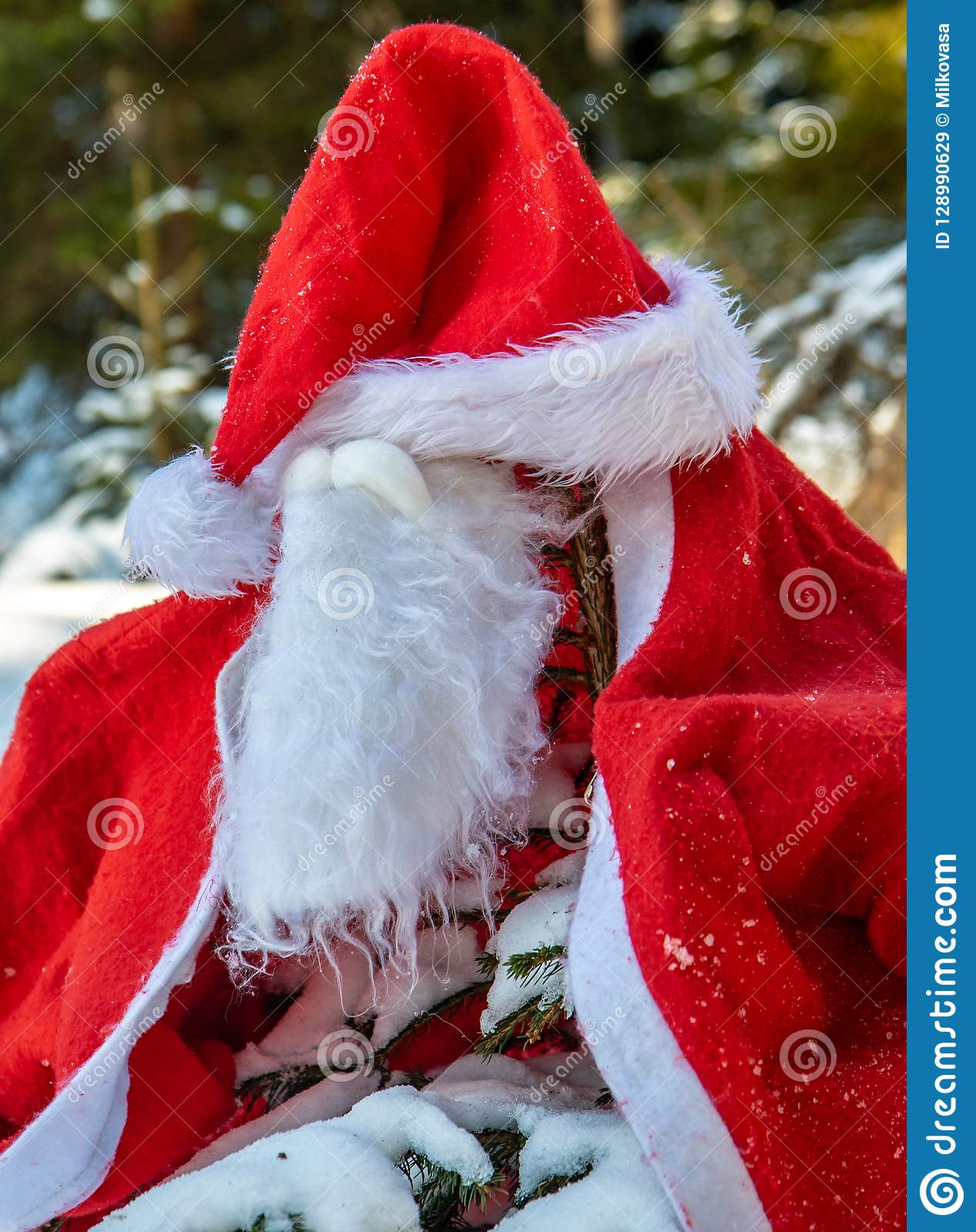 The Santa Claus costume with beards hangs on the spruc