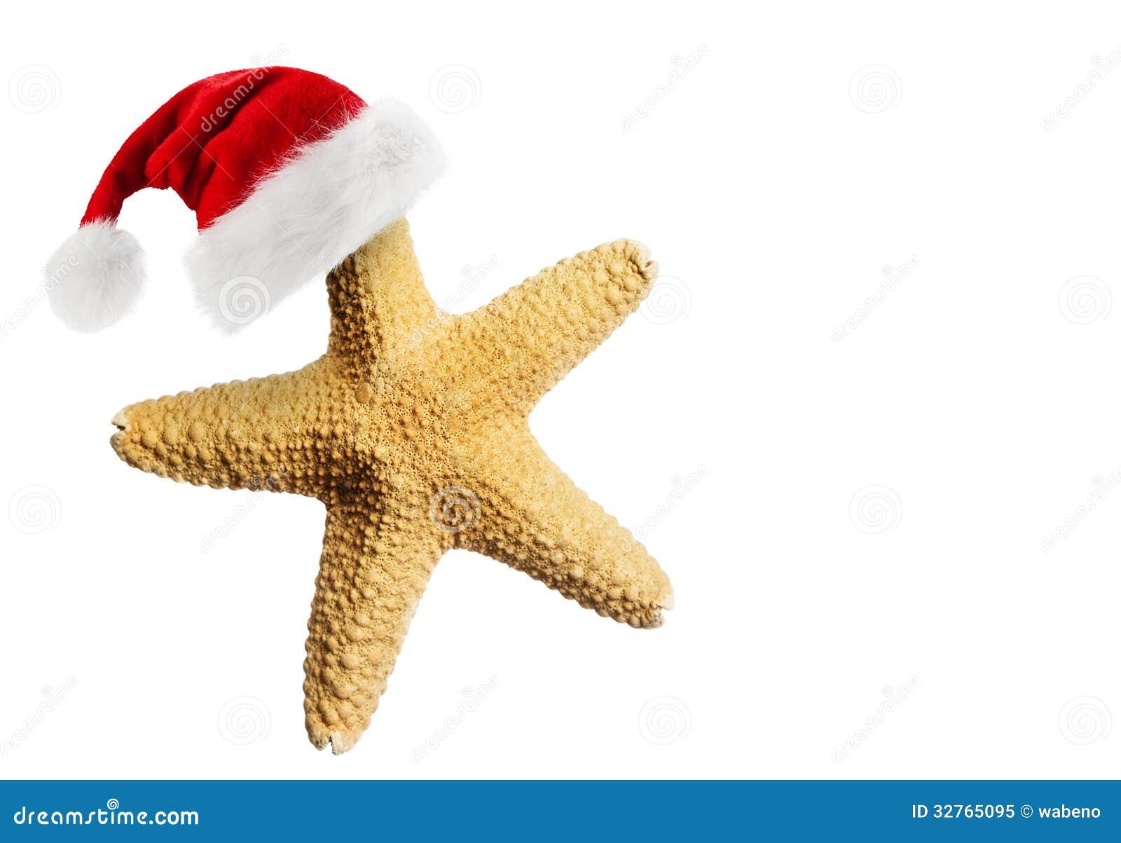 Santa Claus Hat On Starfish Royalty Free Stock Photo - Image: 32765095
