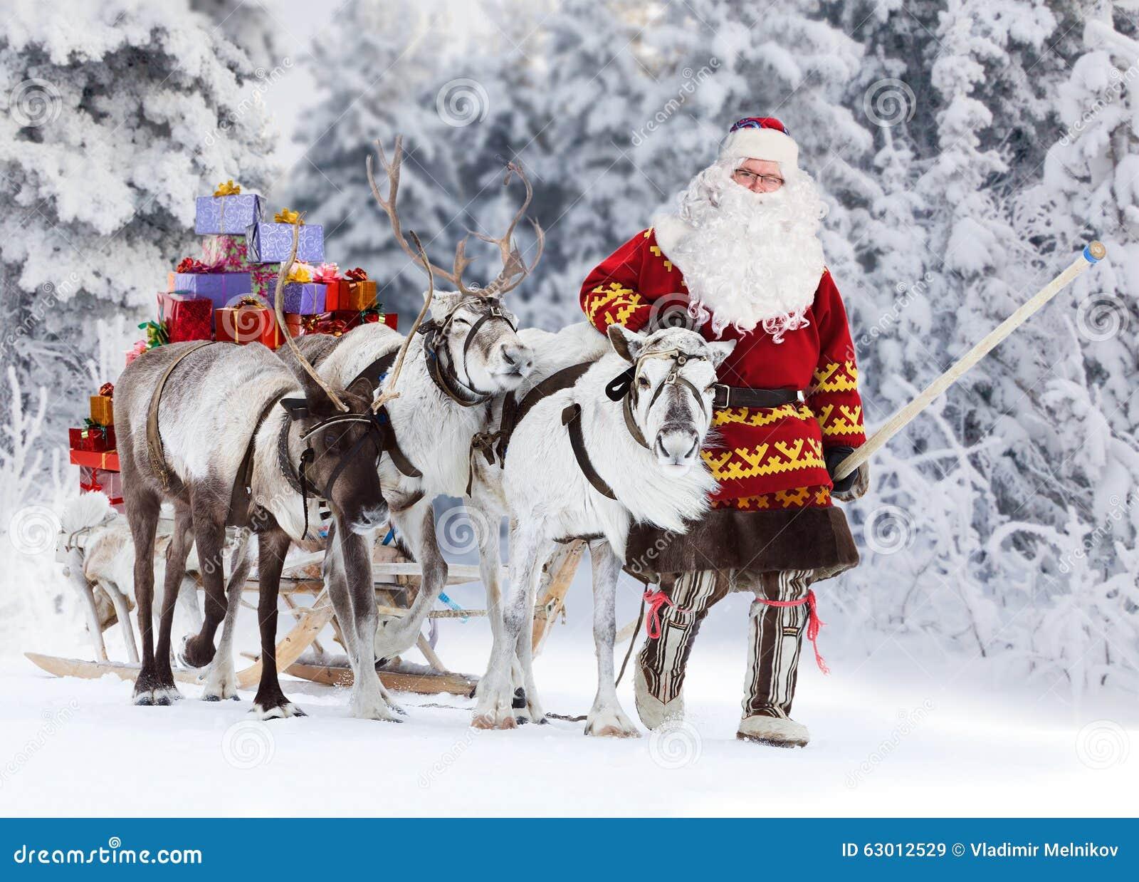 santa claus and his reindeer stock image image of santa person