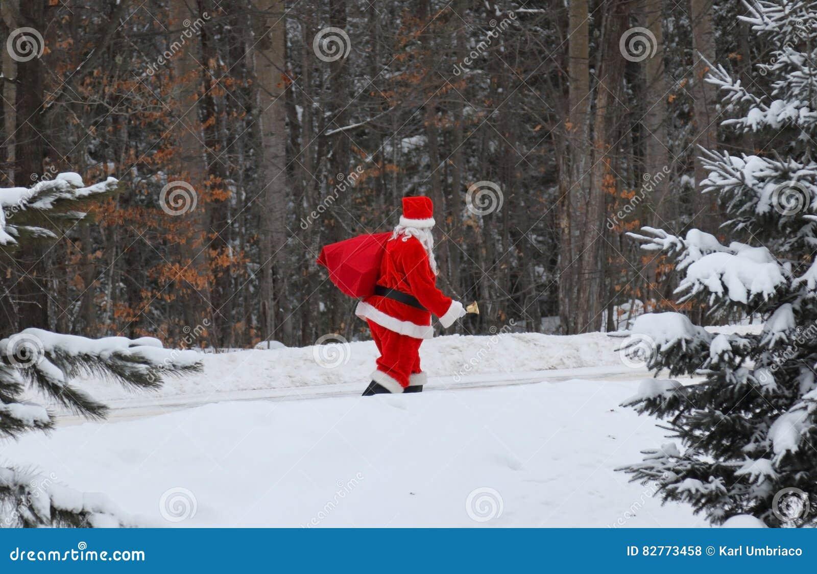 Santa Claus odprowadzenie w lesie