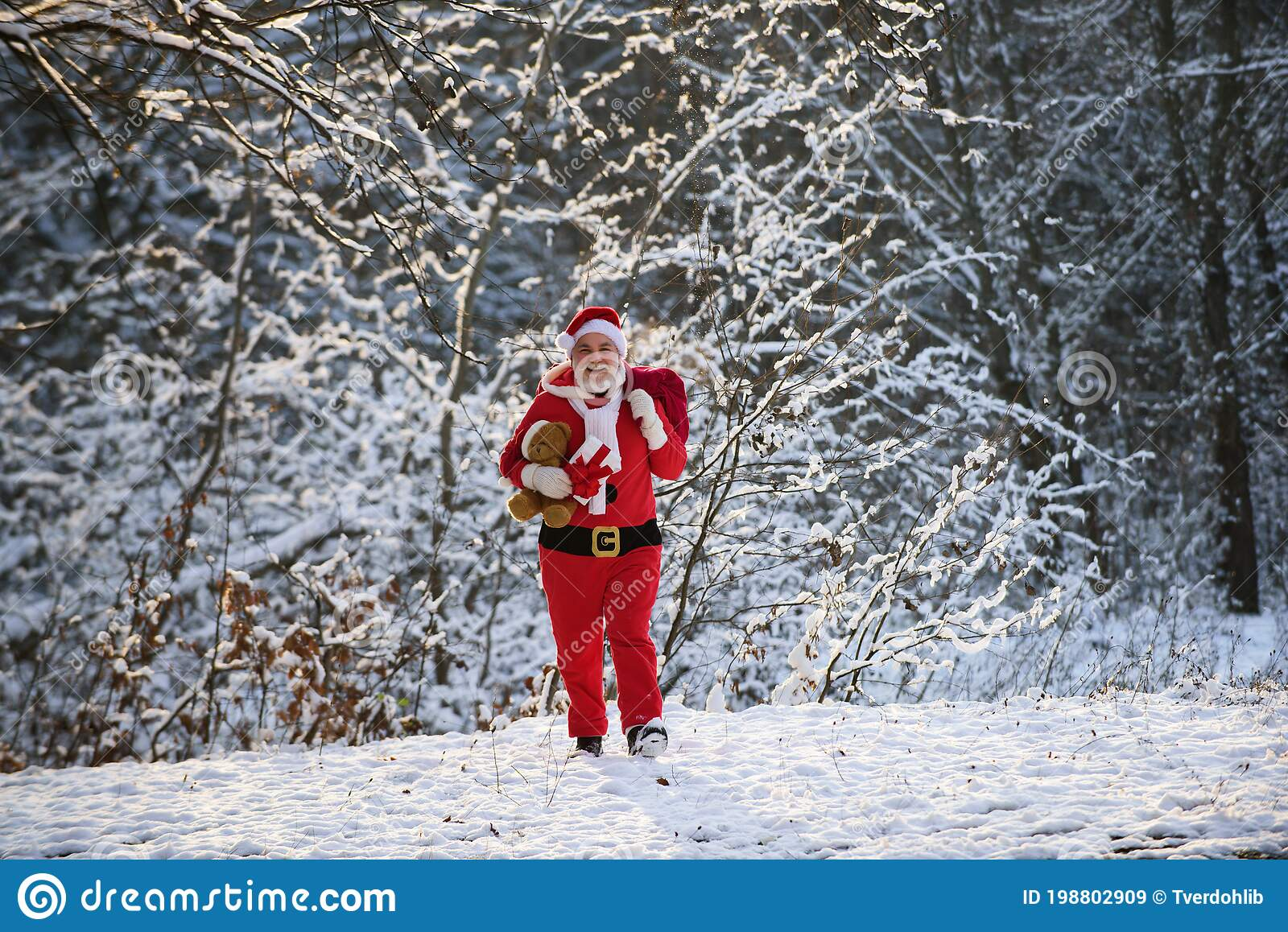 Santa Grandfather Deliver Gifts Claus In Christmas Suits In Snowy Winter Mountain Stock Image Image Of Event Festive 198802909