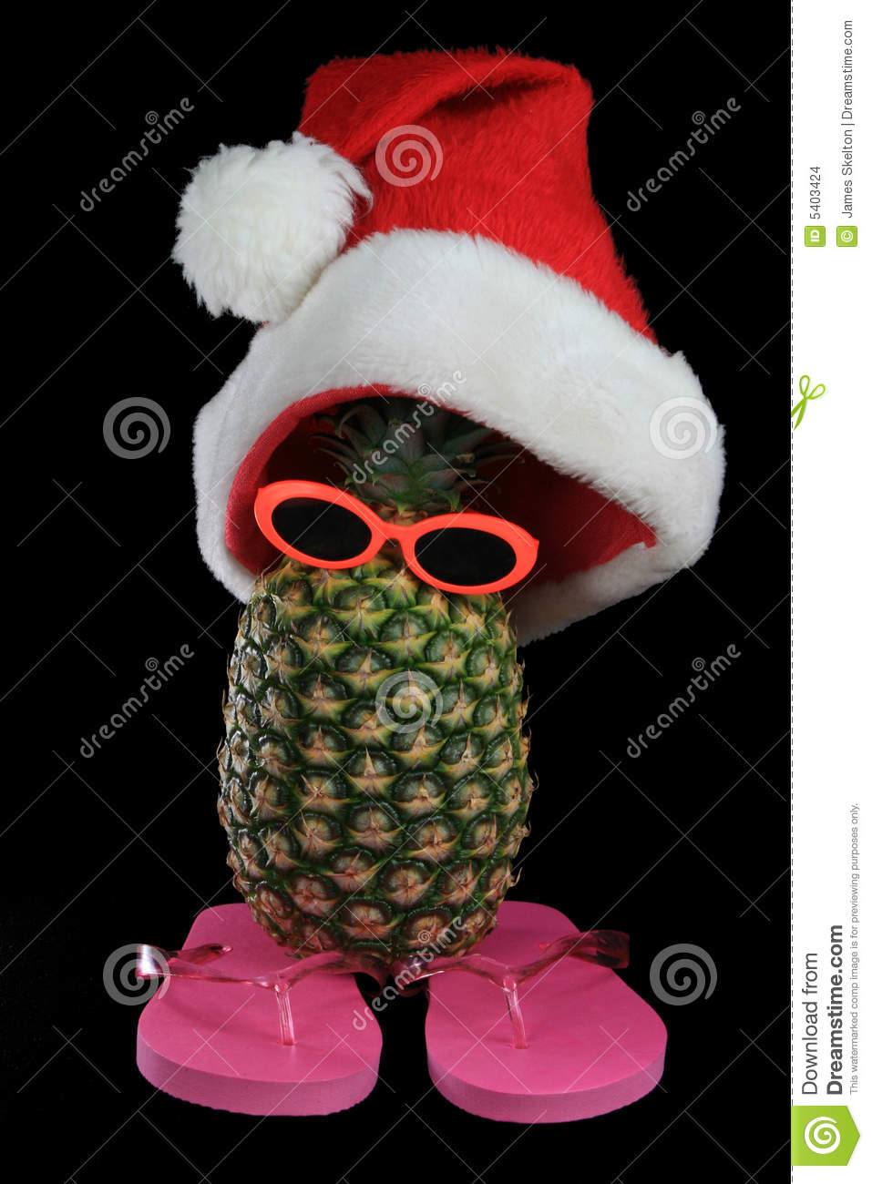 Santa Hat On Silly Pineapple Stock Photo Image 5403424