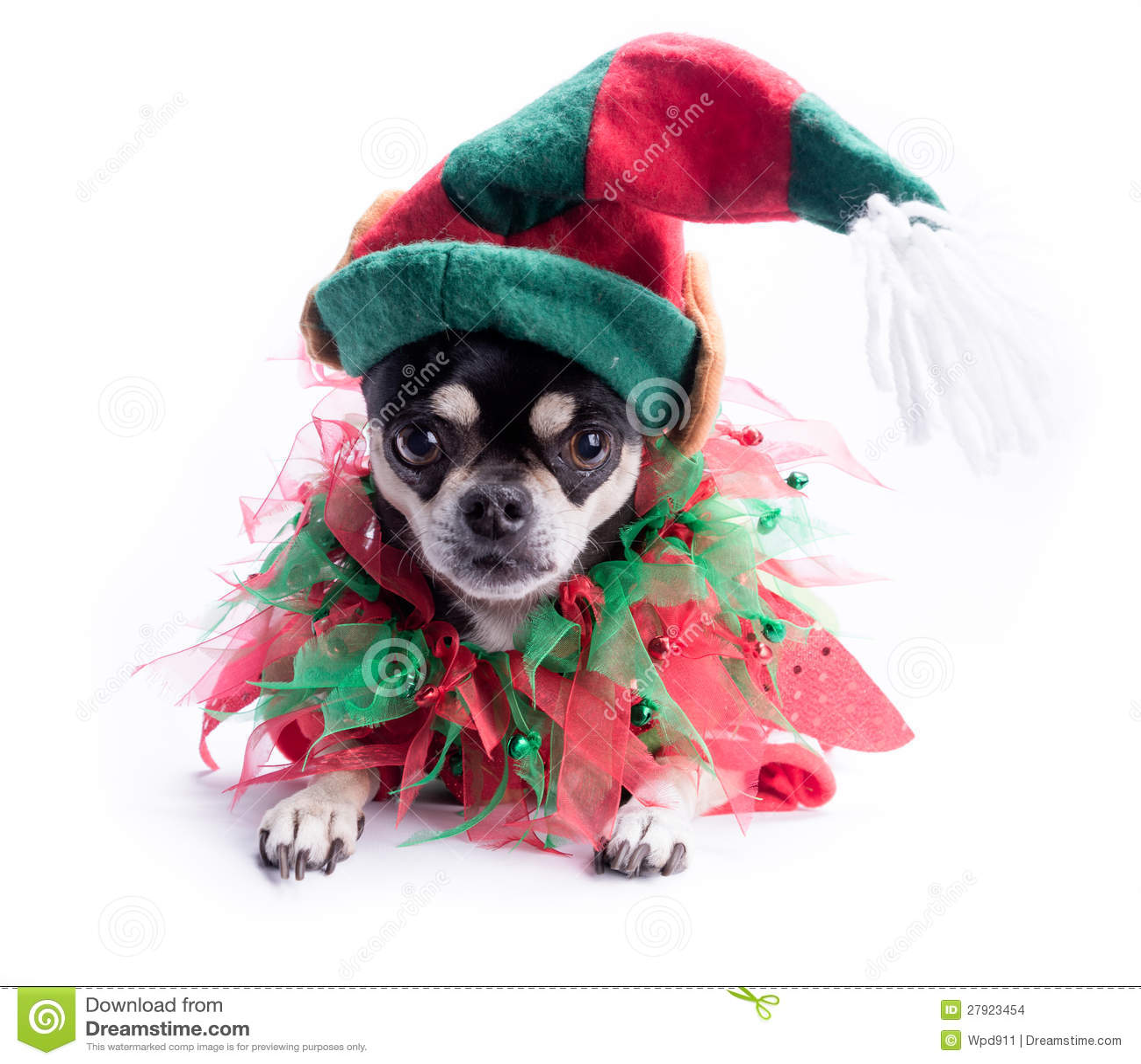 Santa S Little Helper Dog Costume