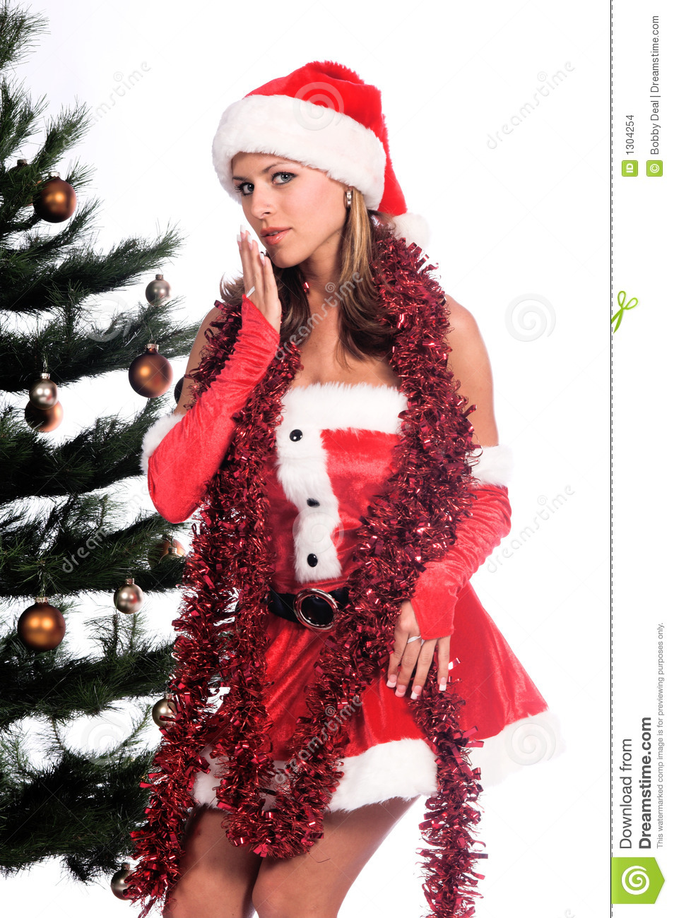 Merry christmas sexy santa helpers apologise, but