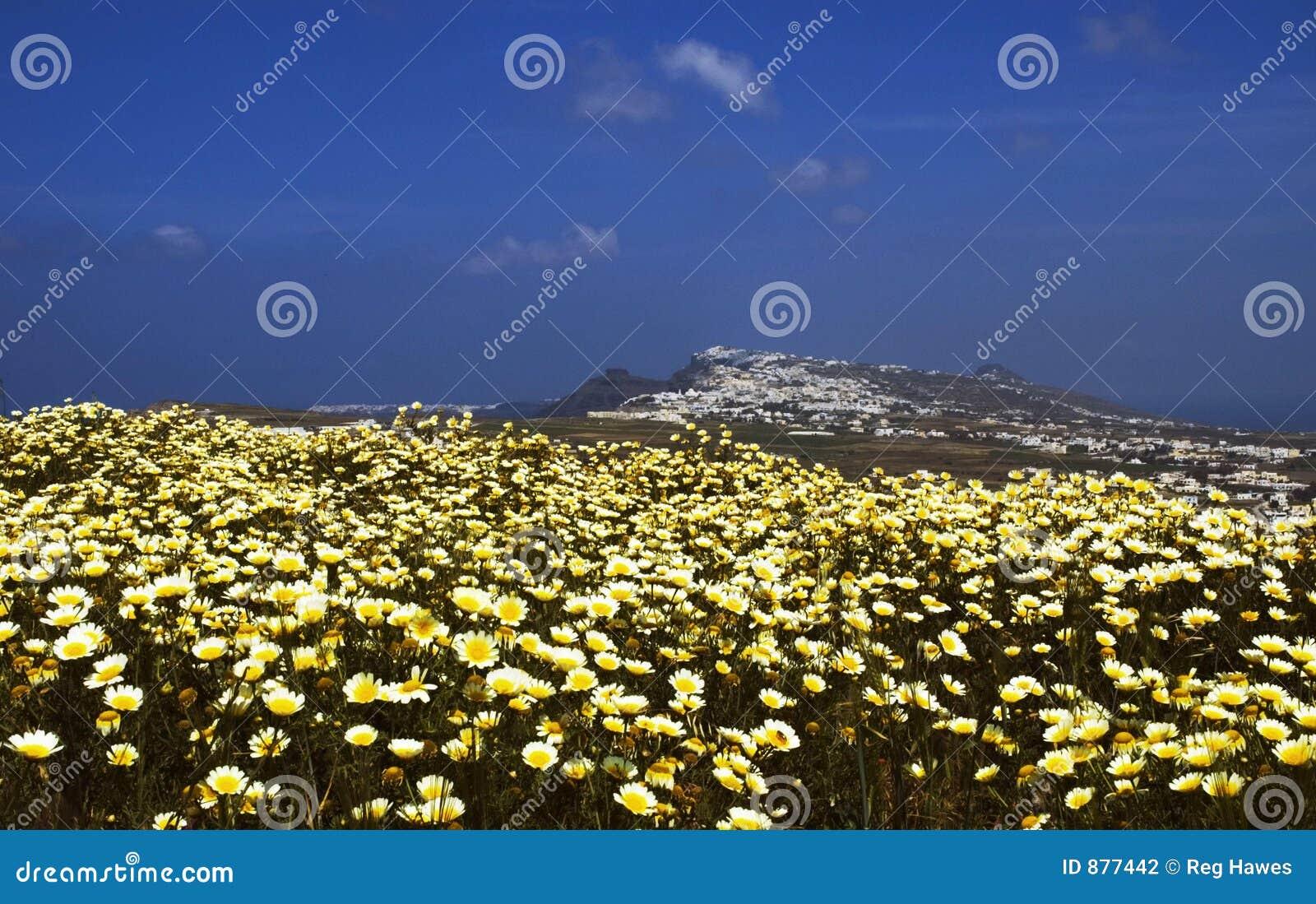 Santorini wiosna