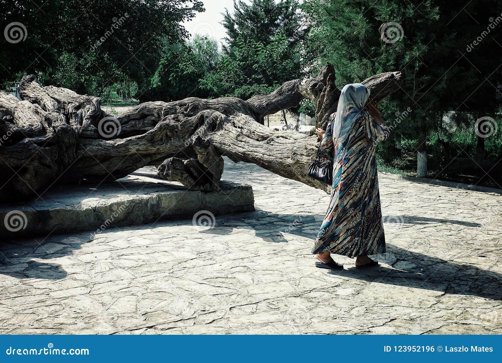 Santuário de Nashqabandi com uma senhora do peregrino que circunda em torno da árvore legendária