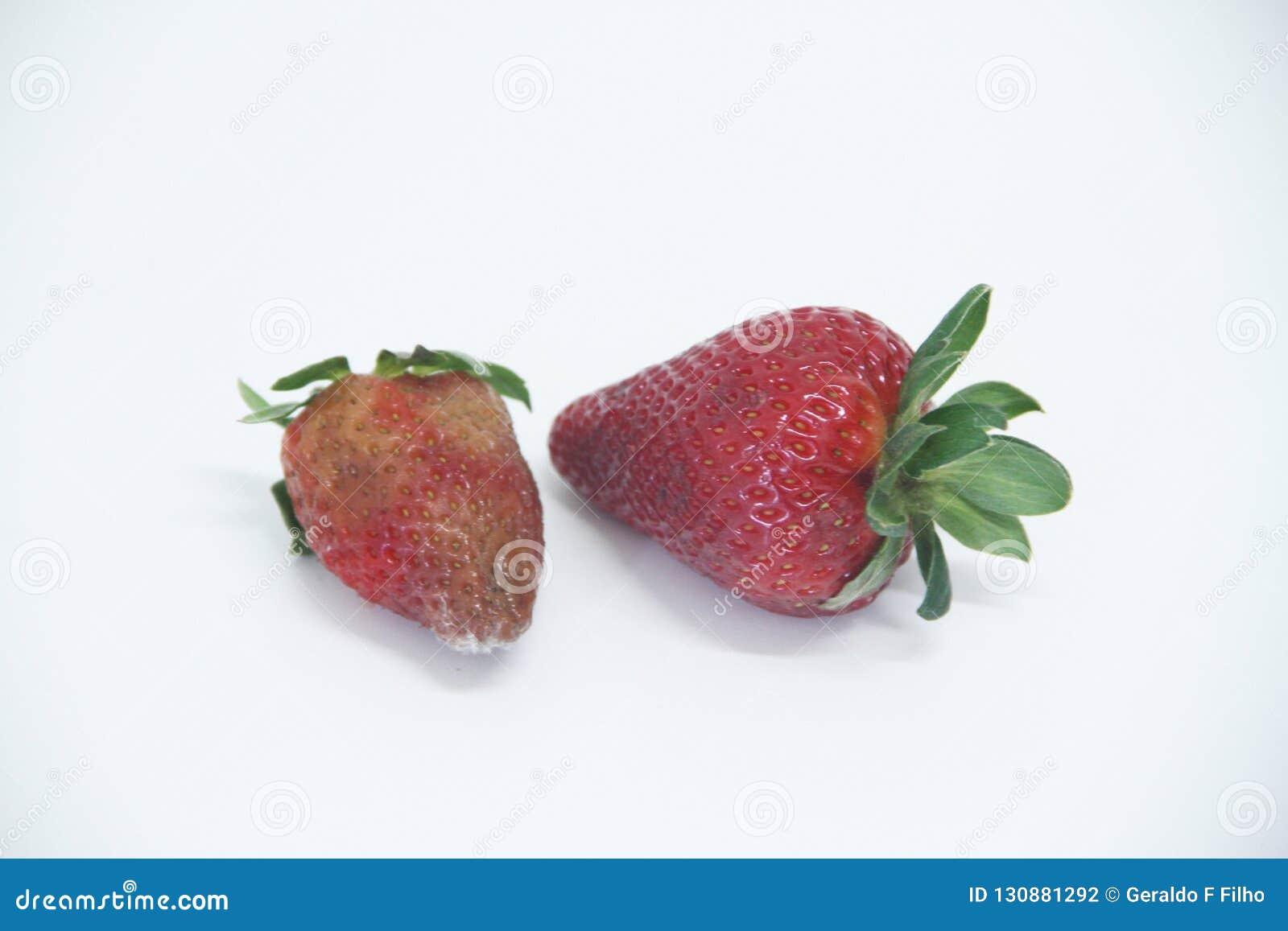 Sao Paulo Brazil för frukt för form för jordgubbemat åkerbruk isolerad läcker healthful