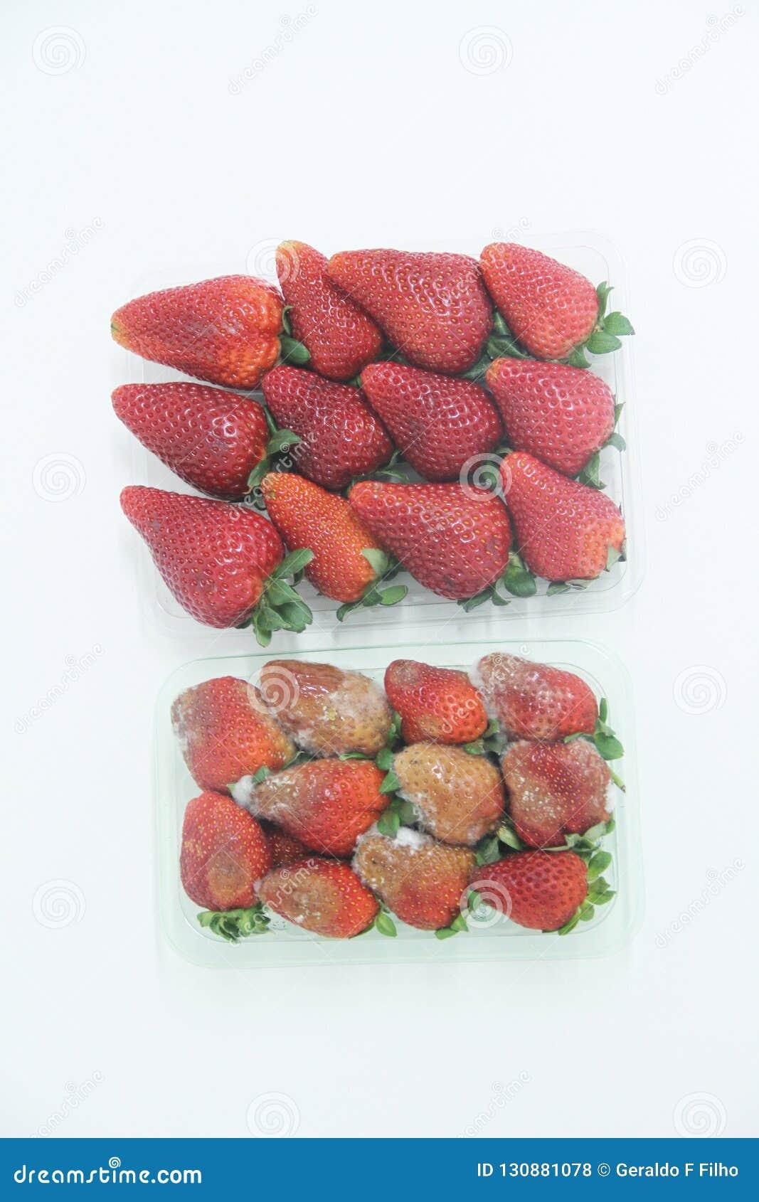 Sao Paulo Brazil för frukt för vitamin för jordgubbemat åkerbruk isolerad läcker healthful
