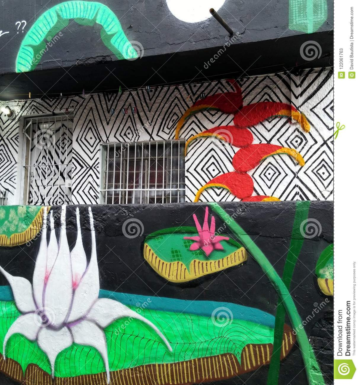Colorful Mural Of Street Art About Lotus Flower Heliconia And