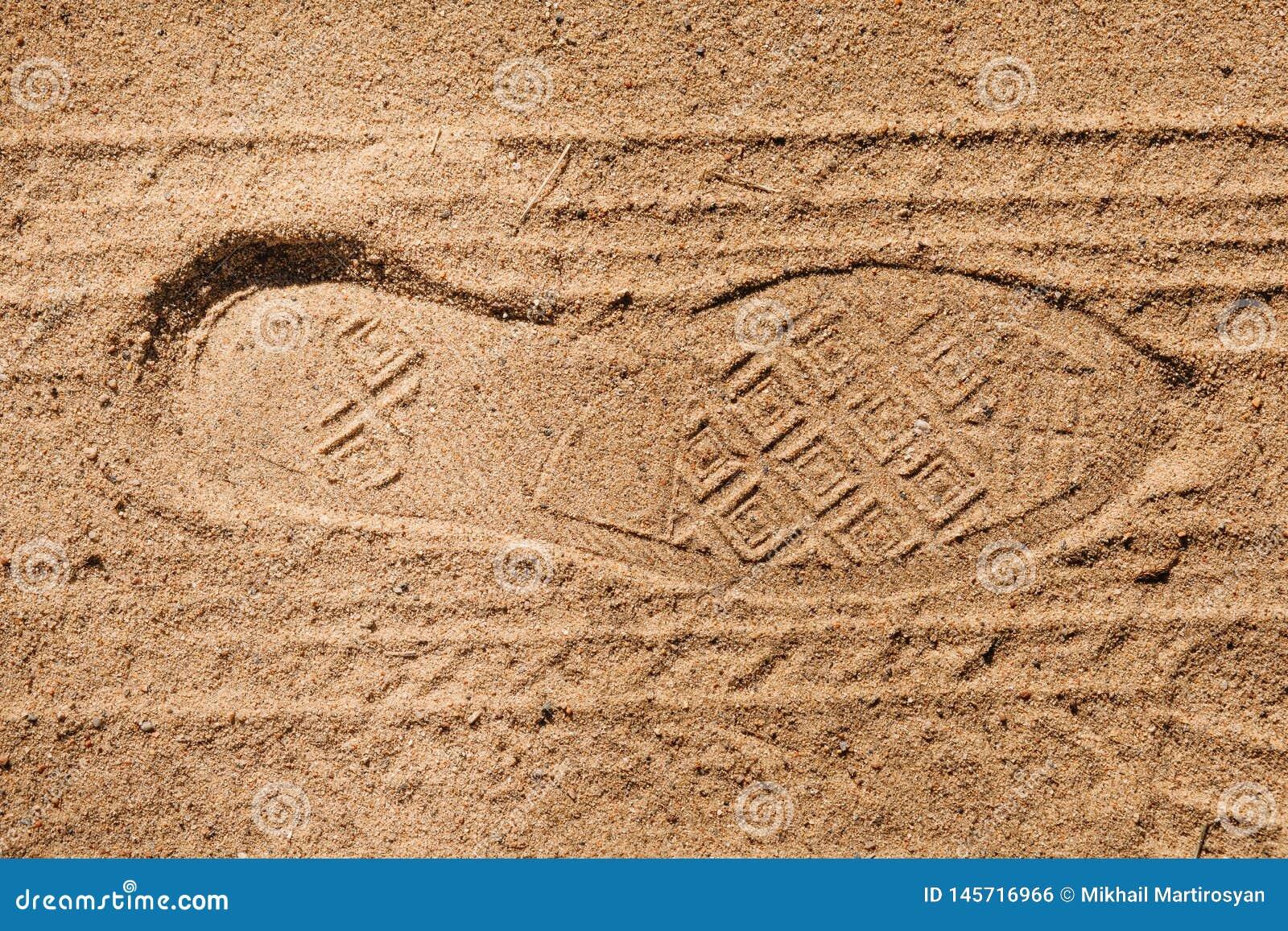 Sapatas e pneus do passo da pegada na areia