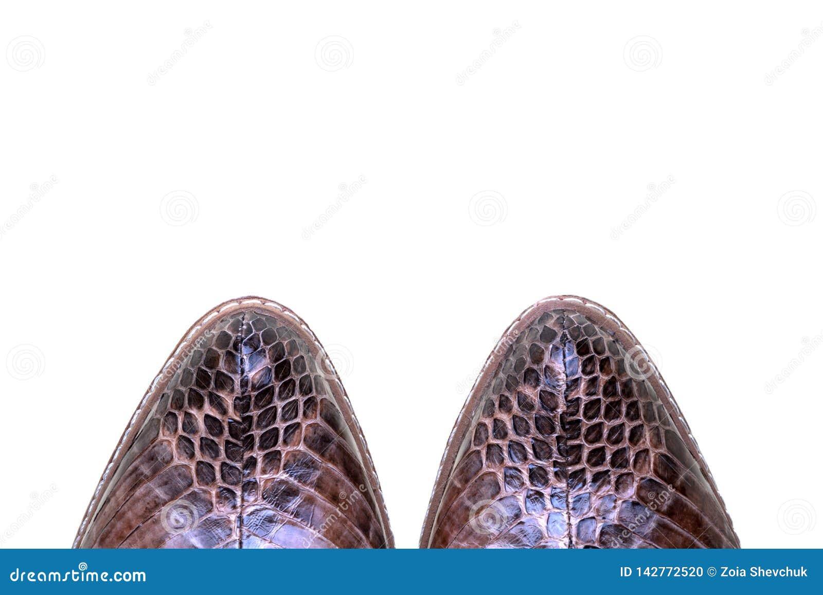 Sapatas luxuosas das mulheres Couro genuíno da serpente Objeto da forma