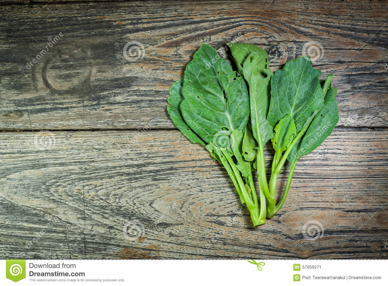 Sapling green kale on old wood background