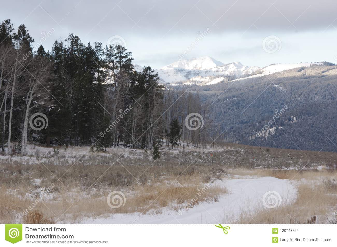 Sapphire Mountains Montana Map.Sapphire Mountains In Montana In Winter Stock Photo Image Of