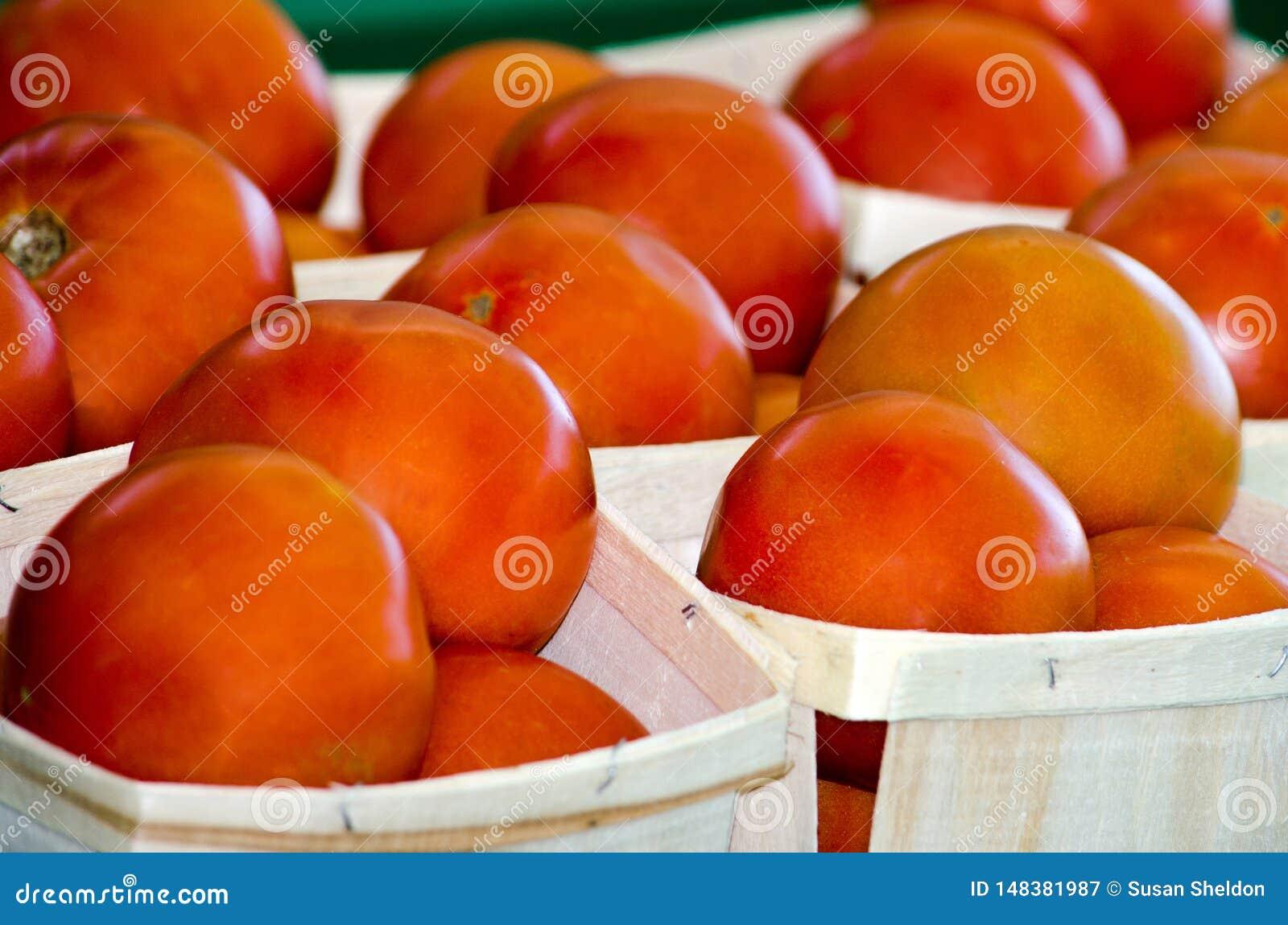 Sappige rode tomaten voor verkoop