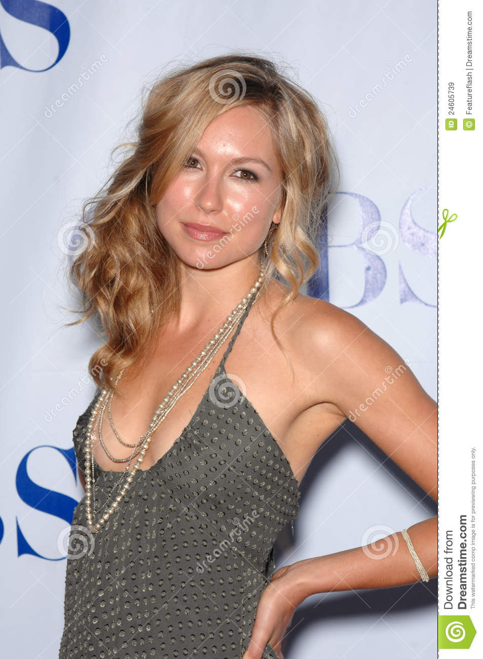 Shark star Sarah Carter at the CBS Summer Press Tour Stars Party 2007 ...
