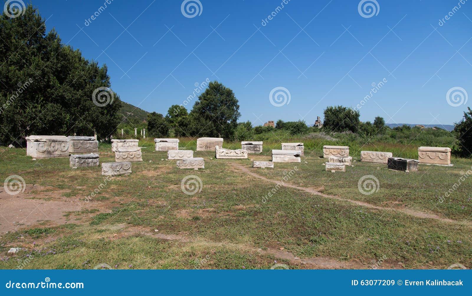 Download Sarcophage Dans La Ville Antique D'Ephesus Image stock - Image du tombe, course: 63077209