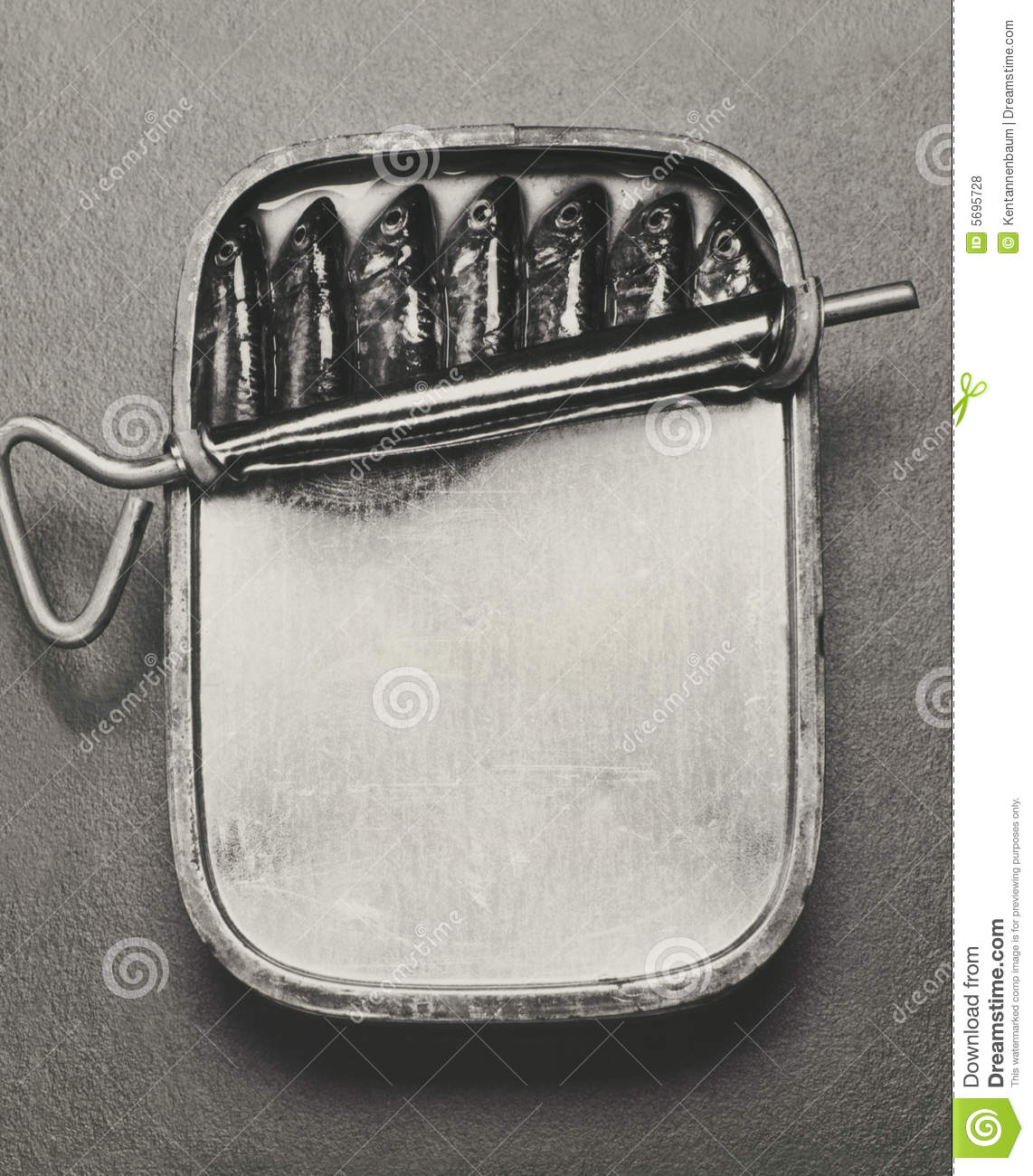Sardine can royalty free stock photos image 5695728 for Empty sardine cans