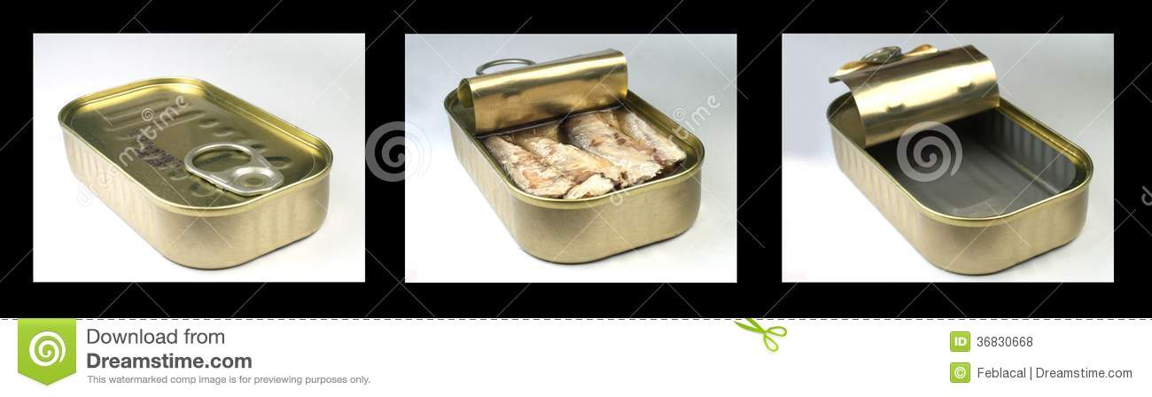 Sardine can stock photo image of close lunch isolated Empty sardine cans