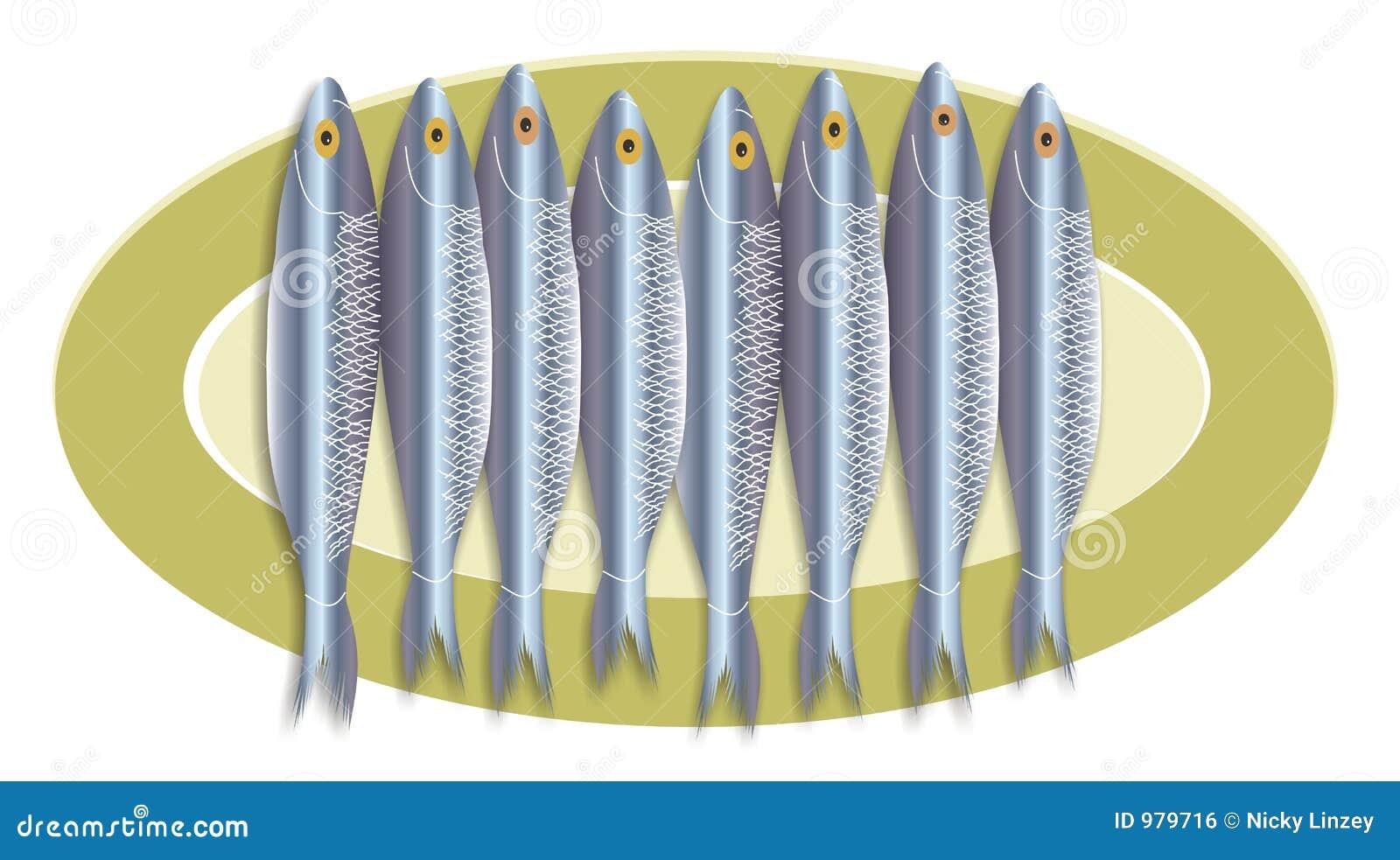 Sardinemehrlagenplatte