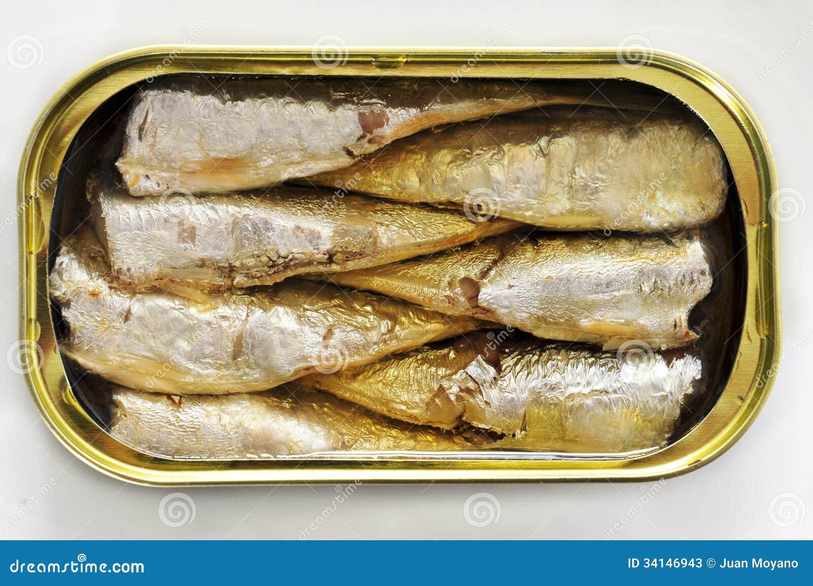 sardines en bo te image stock image du p trole marin 34146943. Black Bedroom Furniture Sets. Home Design Ideas