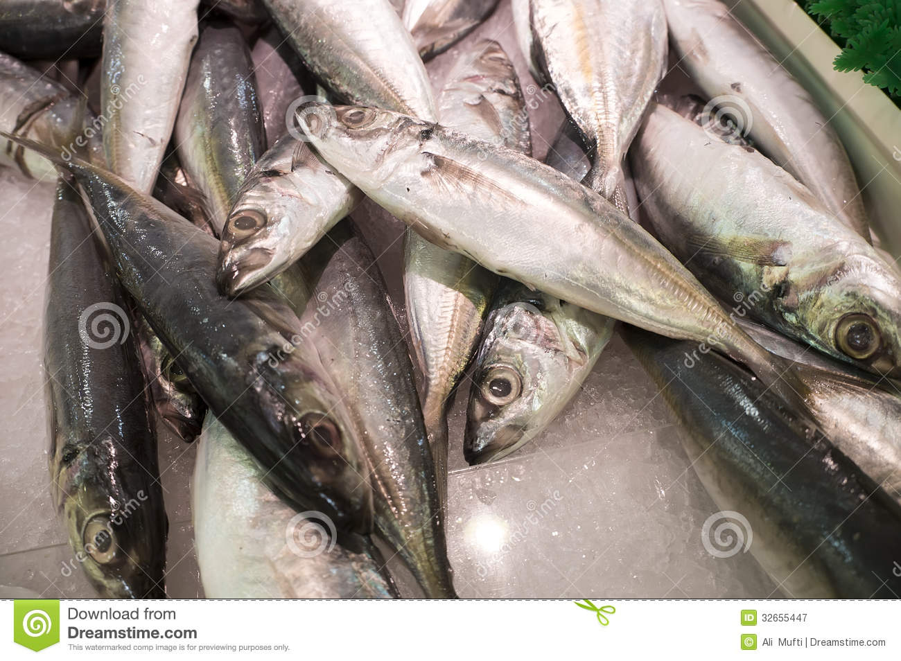 Sardines fish at wet market royalty free stock photography for Is a fish wet