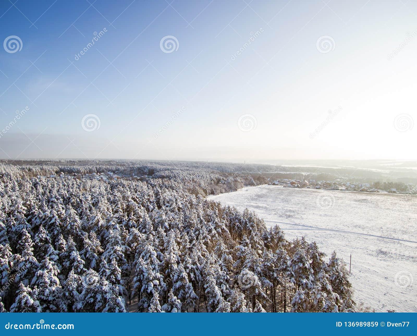 Satellietbeeld op gebied en de winterbos in sneeuw Dorp, daken na sneeuwval Vogelsoog van hommel