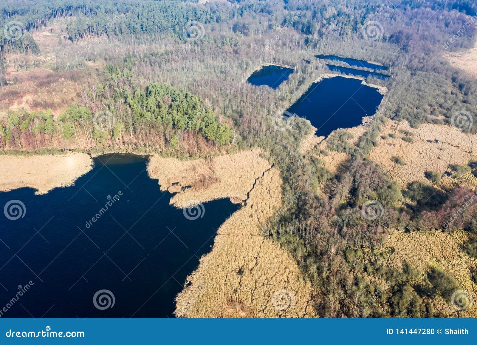 Satellietbeeld van mooi meer en bos, Polen
