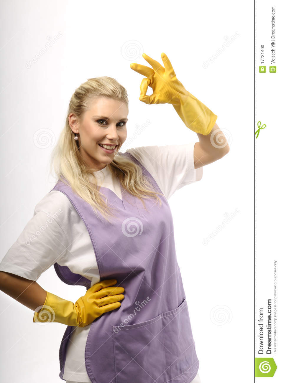 Satisfied Cleaning Lady Stock Photo Image 17731400