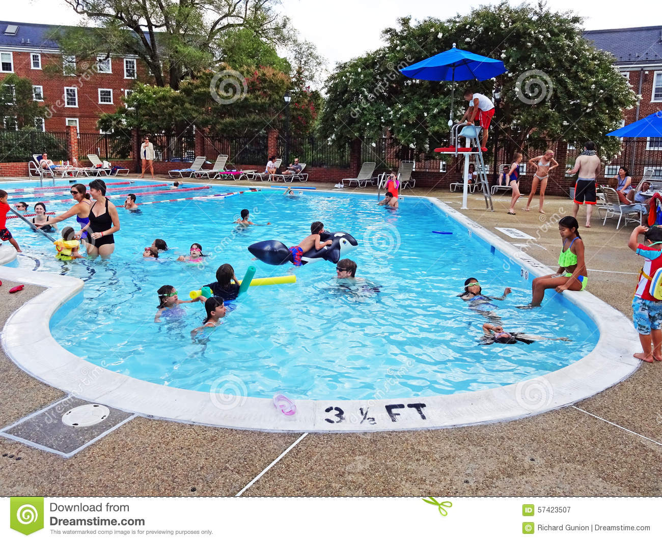 Saturday at the swimming pool editorial photography - How big is an average swimming pool ...