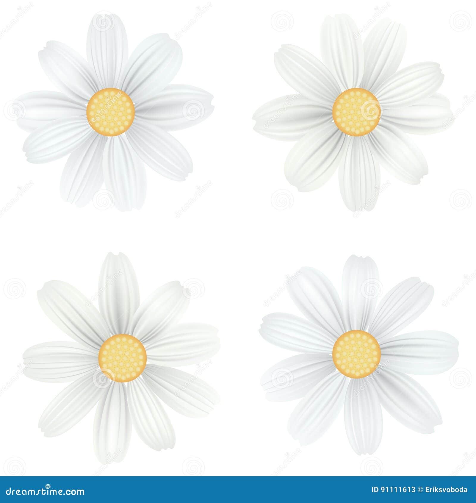 Atemberaubend Blumen Malvorlagen Gänseblümchen Fotos - Malvorlagen ...