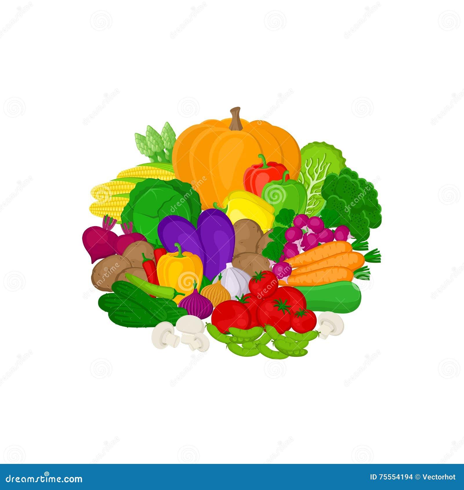 Satz frisches buntes Gemüse lokalisiert auf weißem Hintergrund