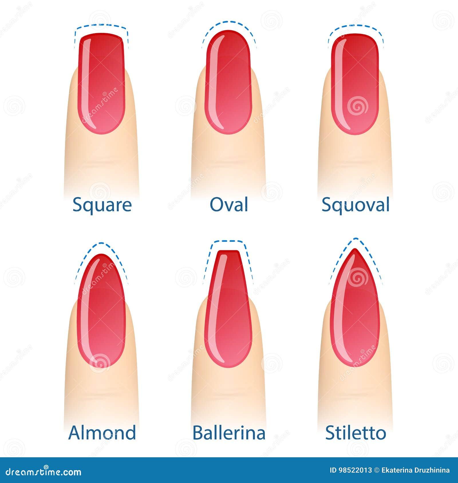 satz nagelformen vektor abbildung. illustration von finger - 98522013