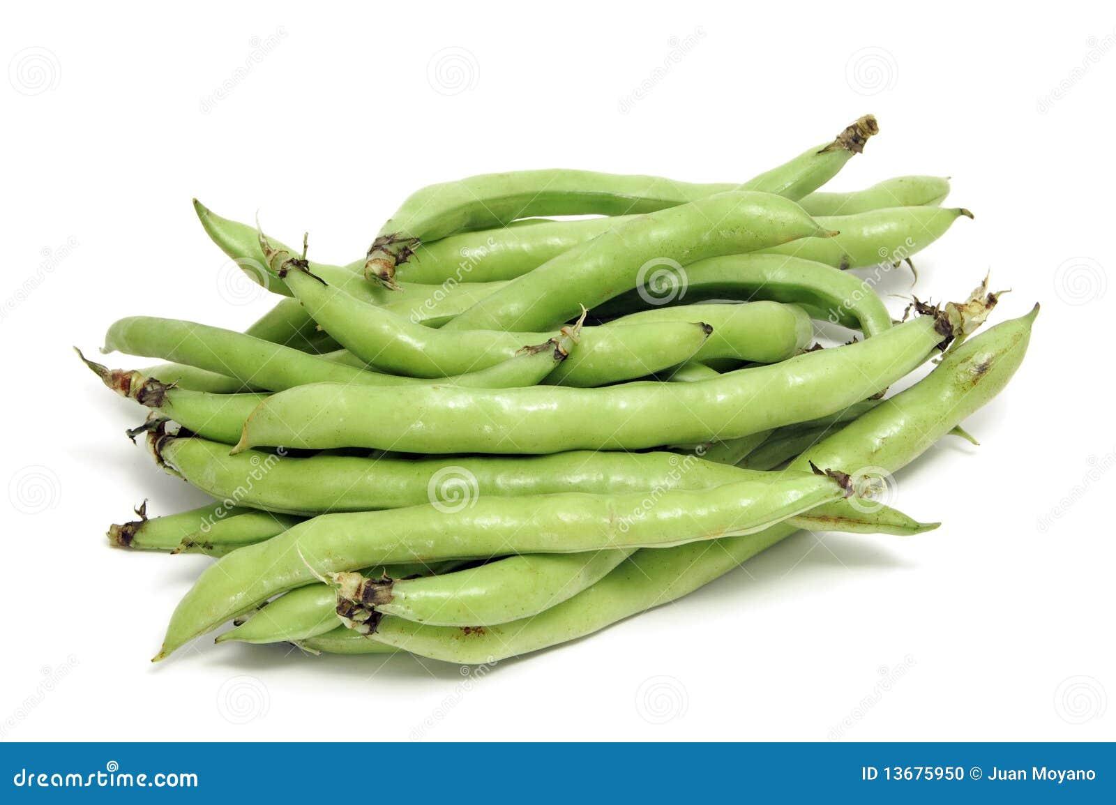 Saubohnen auf Diät