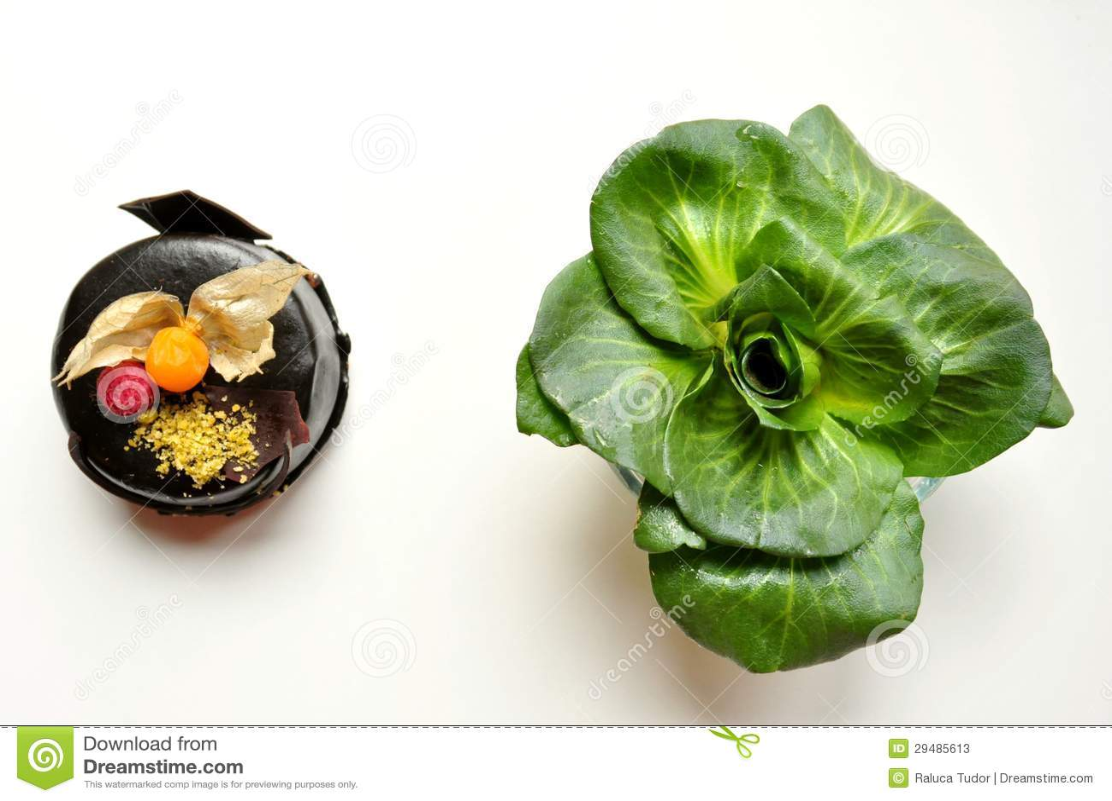 Saudável contra o conceito insalubre do alimento