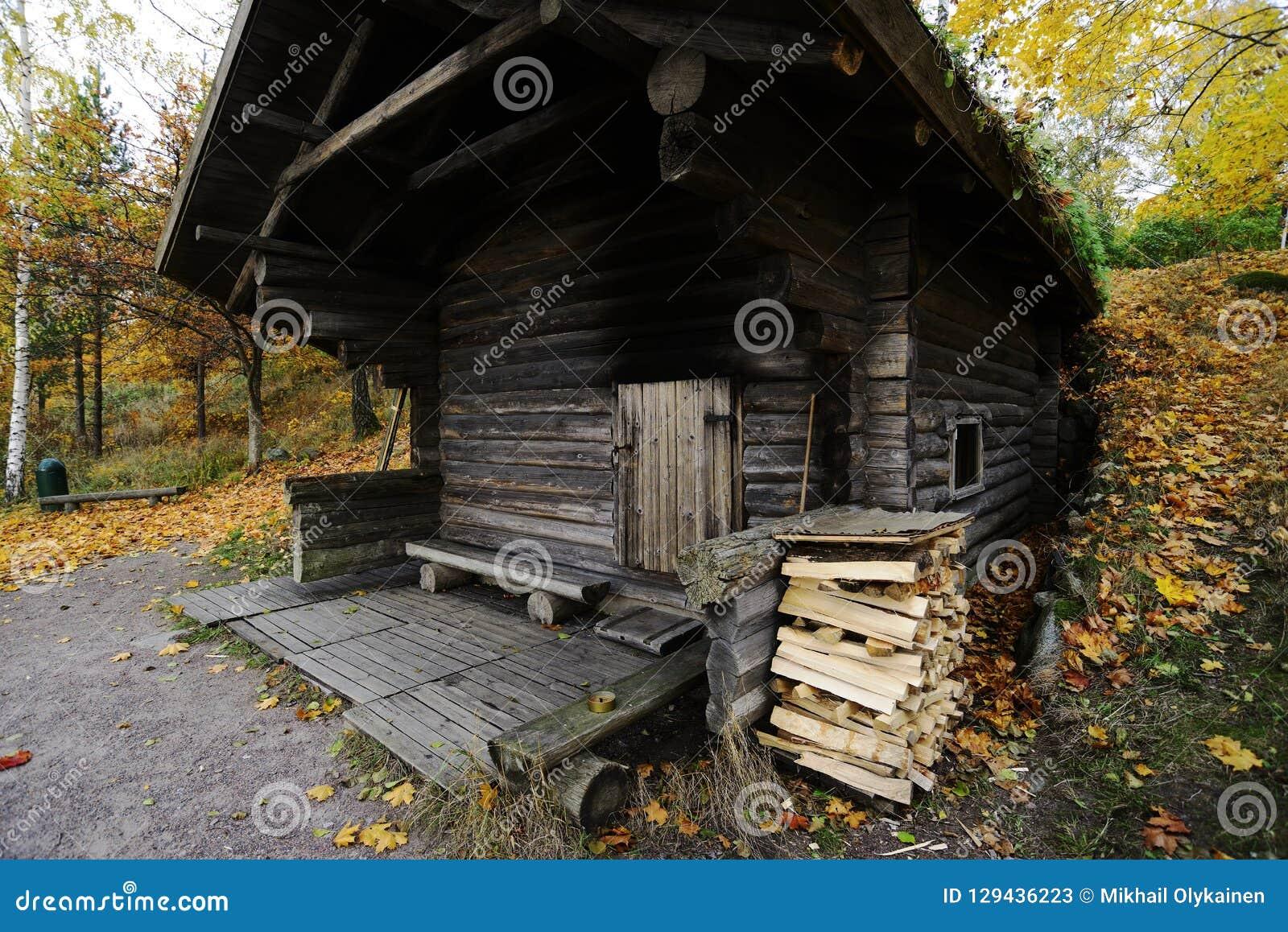 Sauna Finlandais Traditionnel En Bois En Automne, Extérieur