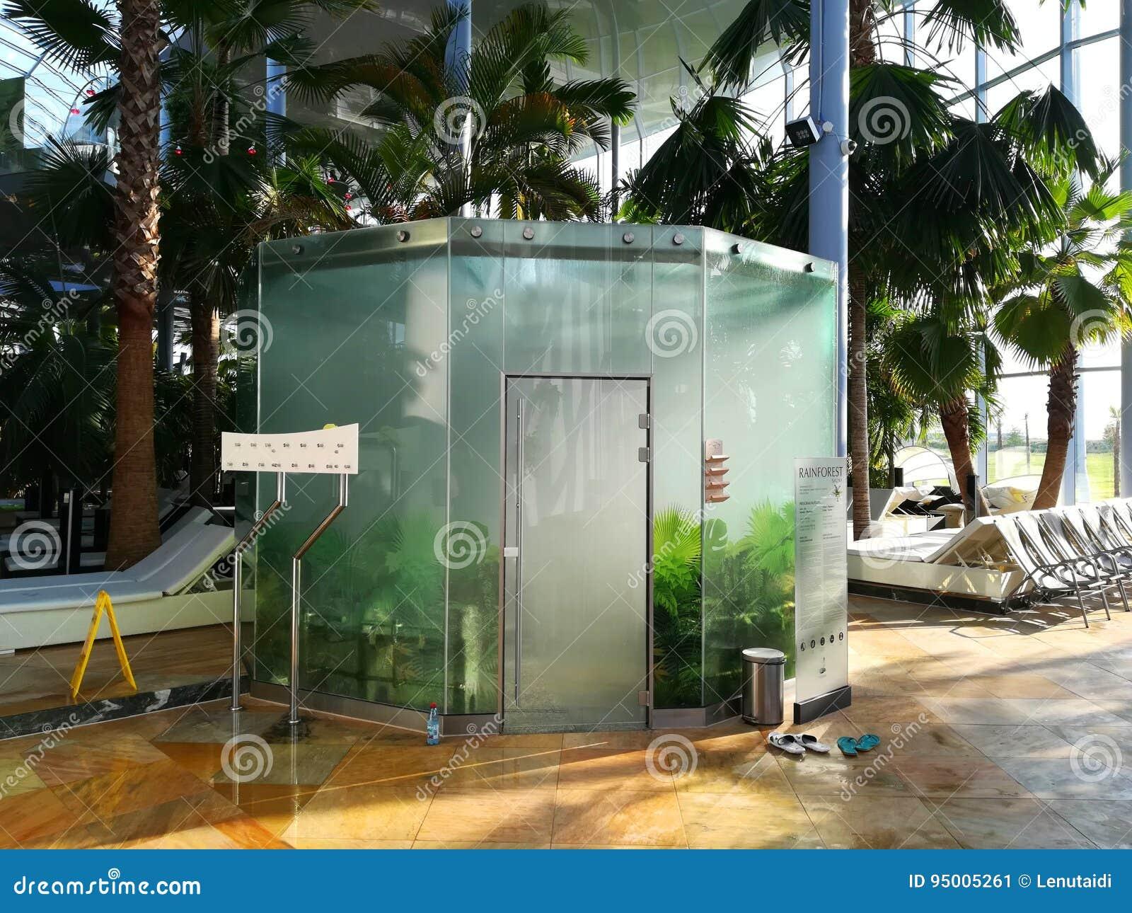 Sauna floresta