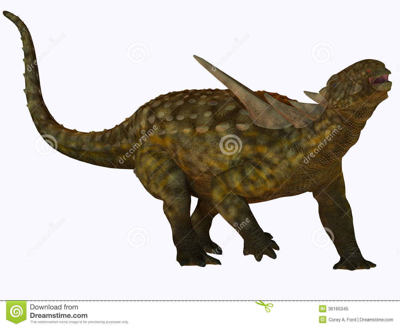 Sauropelta was a herbivore dinosaur that lived in river floodplains of    Sauropelta