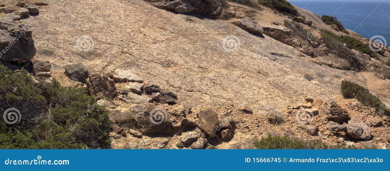 Sauropod Dinosaur footprint trail