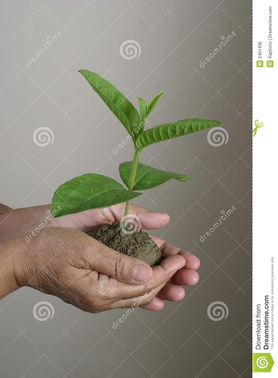 Save Environment Theme Stock Photo. Image Of Increase