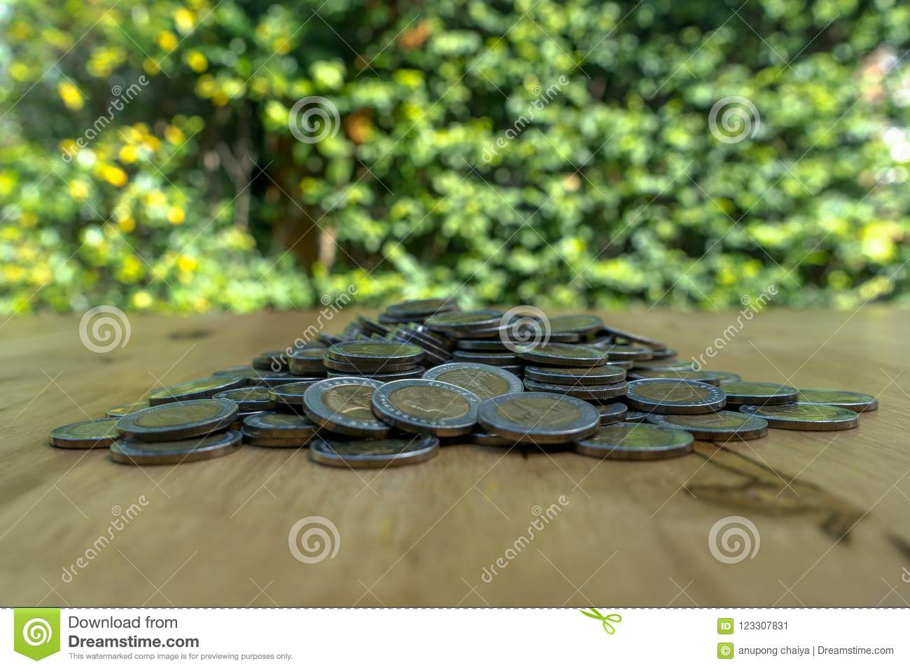Saving money coins, money concept, coins money collect foe save on green background.
