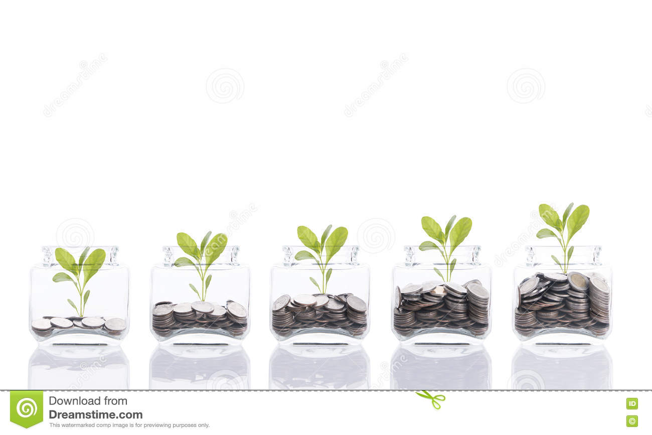 Download Saving Money Concept,business Hand Putting Money Coin Stack Growing Tree On Piggy Bank. Stock Image - Image of piggy, concept: 75303131