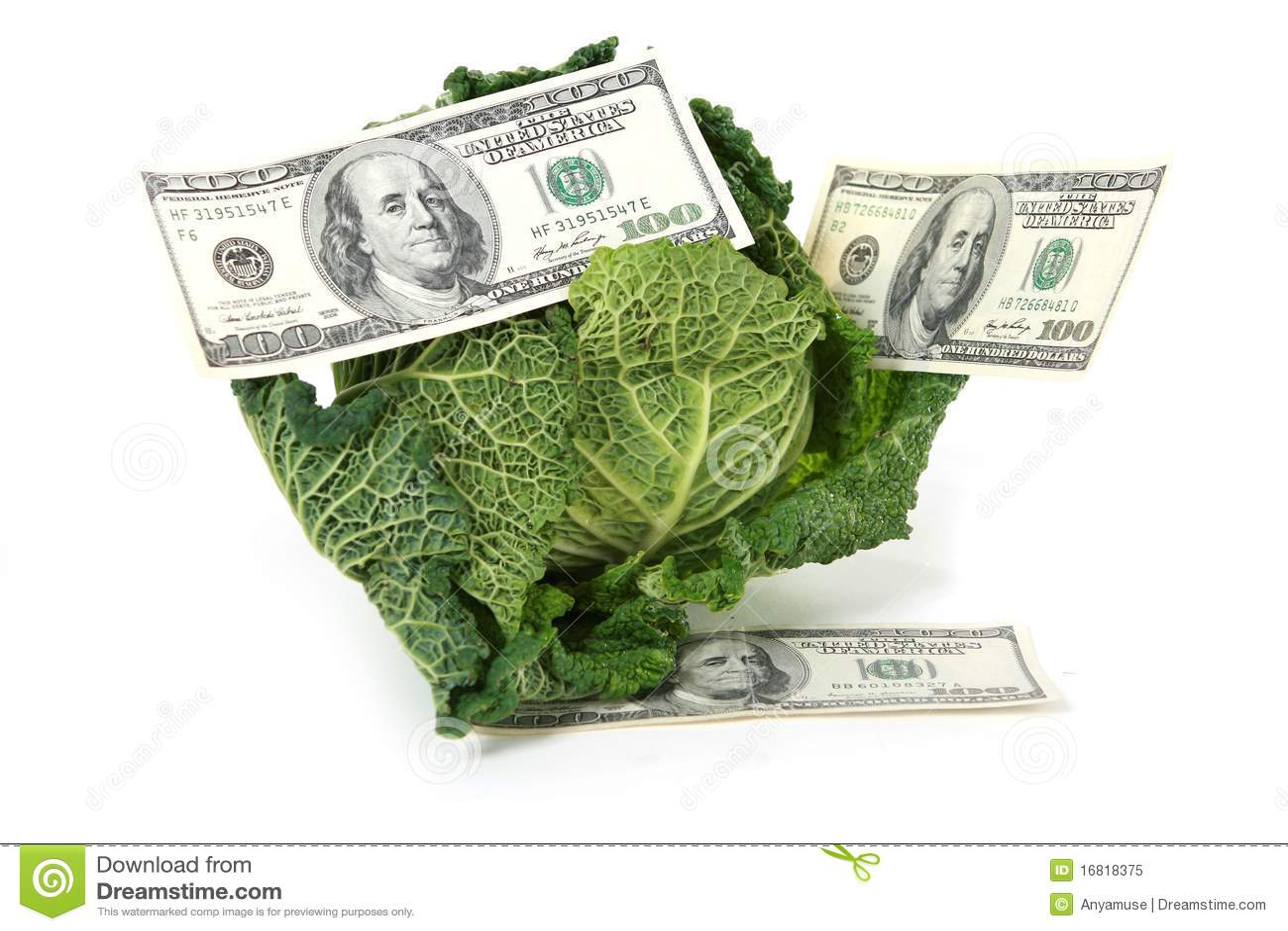 онлайн займы на банковскую капуста