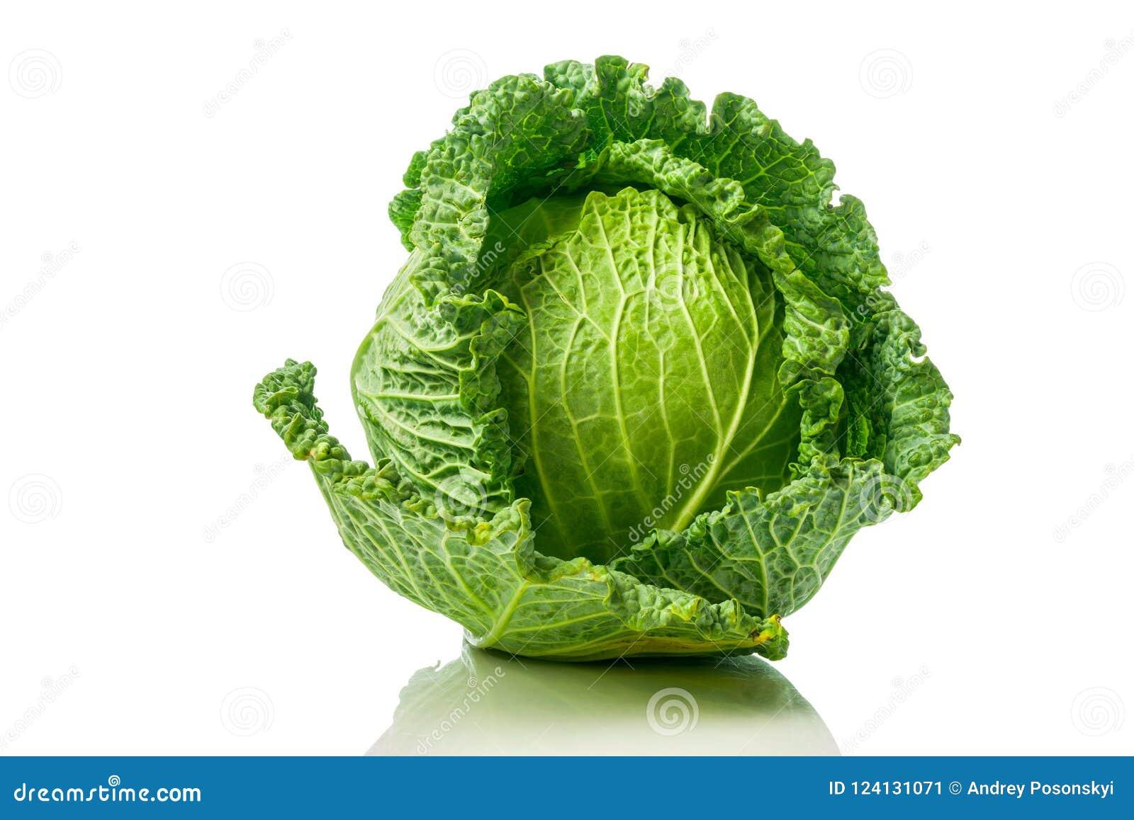 Savoy капусты зеленый