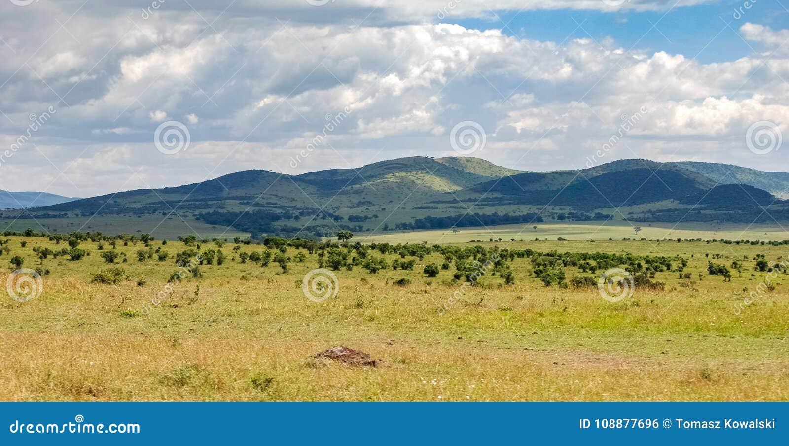 Sawanna w Masai Mara Krajowej rezerwie, Kenja